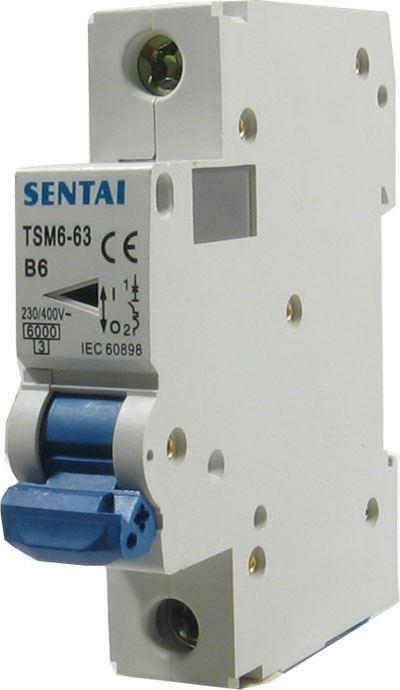 Jistič TSM6-63 230V/6A/B 1fázový na DIN lištu